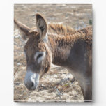 Adorable Donkey Plaque