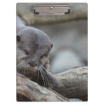 Adorable Otter Clipboard
