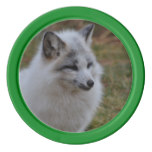 Beautiful White Swift Fox Poker Chips Set