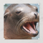 California Sea Lion Invitations