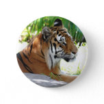 Customize Product Pinback Button