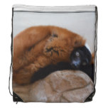 Cute Red Ruffed Lemur Drawstring Backpack