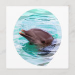 Dolphin Design Invitations