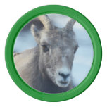 Face of a Bighorn Sheep Set Of Poker Chips