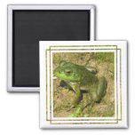 Frog Design Square Magnet