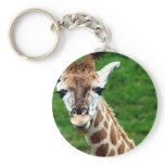 Giraffe Photo Keychain