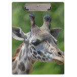 Great Giraffe Clipboard