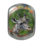 Great Giraffe Glass Candy Jar