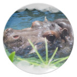 Hungry Hippo Plate
