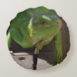 Iguana in the Tropics Round Pillow