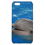 Lovable Dolphin Cover For iPhone 5C