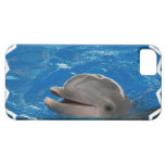 Lovable Dolphin iPhone SE/5/5s Case