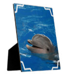 Lovable Dolphin Plaque