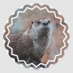 Otter Photo Stickers