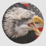 Patriotic Eagle Image Sticker