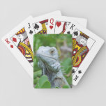 Peek-a-boo Iguana Playing Cards