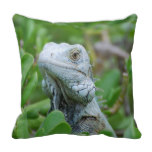 Peek-a-boo Iguana Throw Pillow