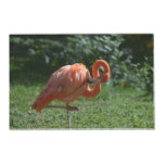 Perfect Pink Flamingo Placemat