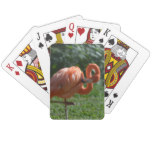 Perfect Pink Flamingo Playing Cards