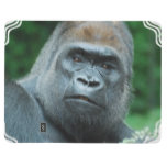 Perplexed Gorilla Journal