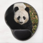 Petulant Panda Bear Gel Mouse Pad