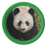 Petulant Panda Bear Poker Chips Set