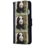 Petulant Panda Bear Wallet Phone Case For iPhone 6/6s