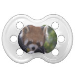 Prowling Red Panda Pacifier
