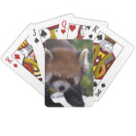 Prowling Red Panda Playing Cards