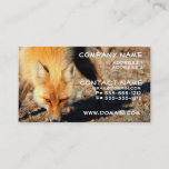 Red Fox Habitat Business Card