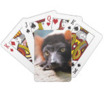 Resting Red Ruffed Lemur Playing Cards