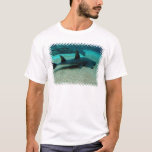 Sand Shark Men's T-Shirt