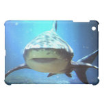 Shark iPad Case
