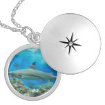 Shark with Reef Locket