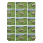 Sheep Family Baby Blanket