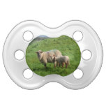 Sheep Family Pacifier