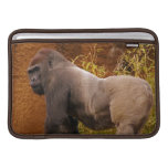 "Silverback Gorilla Photo  11"" MacBook Sleeve"