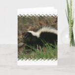 Skunk Behavior  Greeting Card