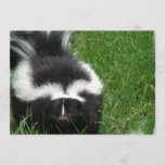 Skunk on an Invitation