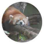 Sleeping Red Panda Plate