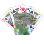Squirrel Hanging in A Tree Bicycle Playing Cards