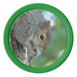 Squirrel Hanging in A Tree Poker Chips