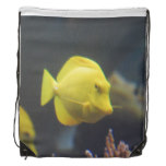 Tang Fish Drawstring Bag