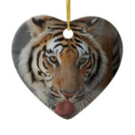 Tiger Kisses Ornament