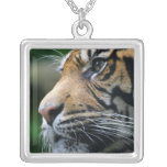 Tiger Picture Sterling Silver Necklace