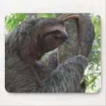 Tree Climbing Sloth Mouse Pad