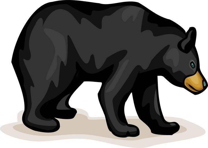 Free Bear Clipart
