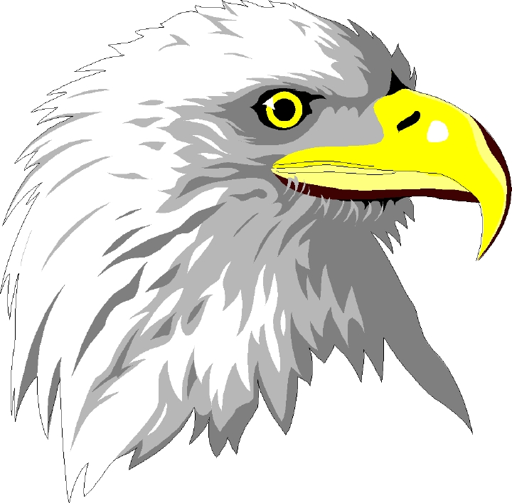free eagle clipart clip art of eagles pic beating patriots clip art of eagles landing