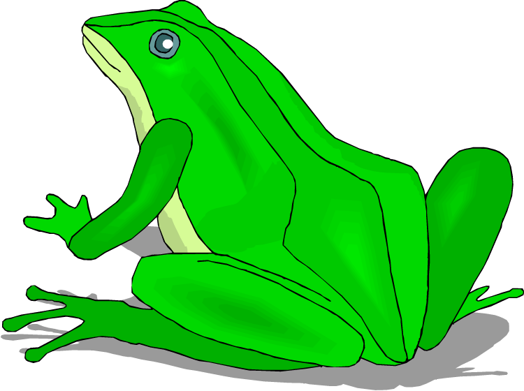 green frog clipart - photo #23