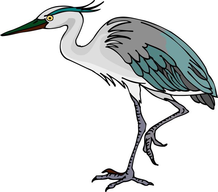 Heron Clipart